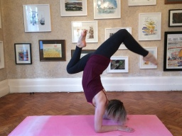 Deepen your practice and peak at pincha (forearm balance) Sunday 20 January 9.30 am