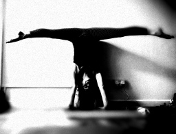 Yoga classes and workshops for spring renewal