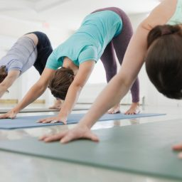 Replenish and rejuvenate in 2020 – New Year beginners yoga course