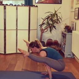 Resilience and arm balances workshops